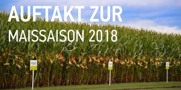 ES Metronom gehört zu den TOP 3 Sorten in Deutschland! EURALIS Saaten GmbH