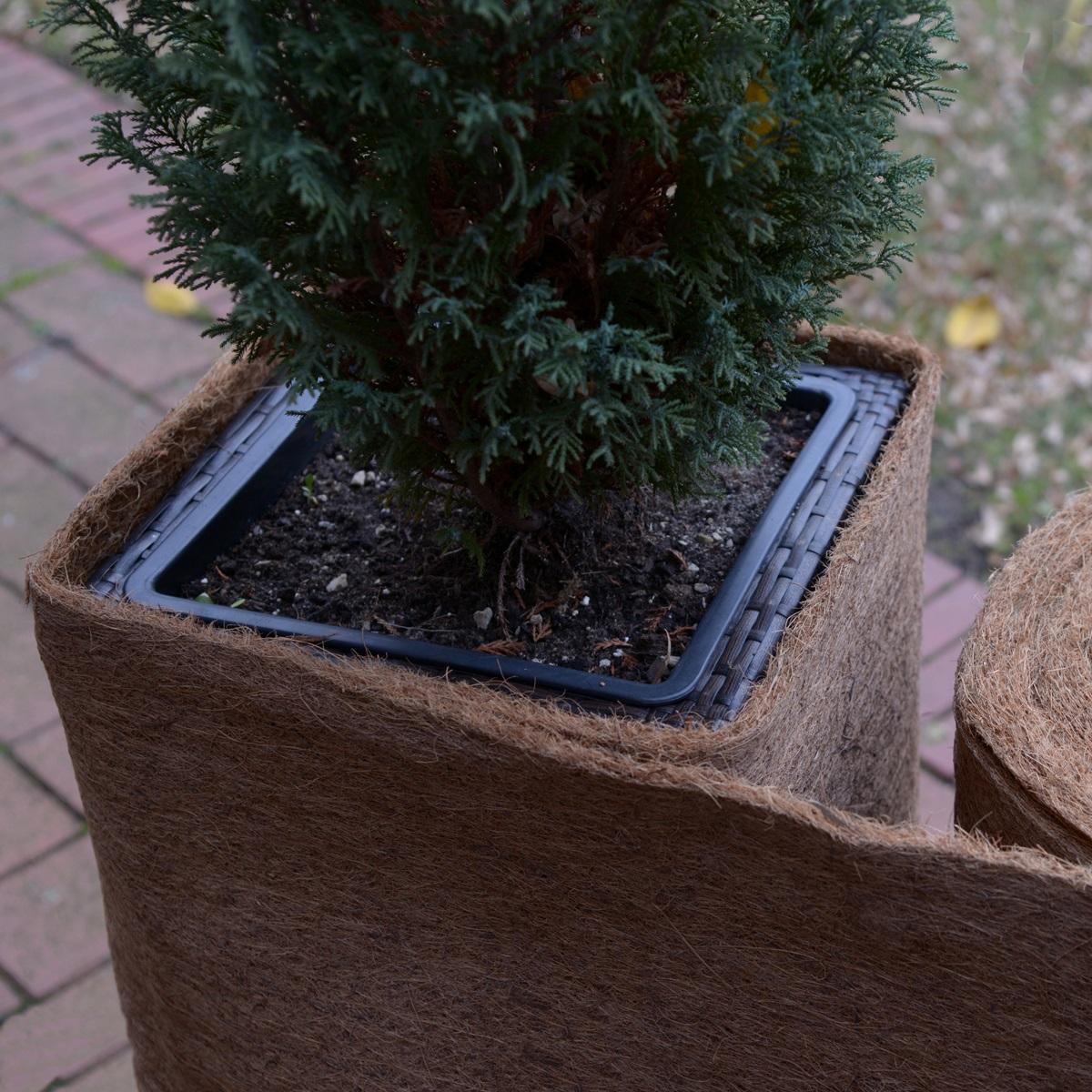 Kokosmatten - optimaler Winterschutz für Ihre Pflanzen