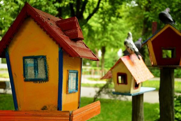 Toller Garten - Das ultimative Ziel für alles, was mit Garten zu tun hat