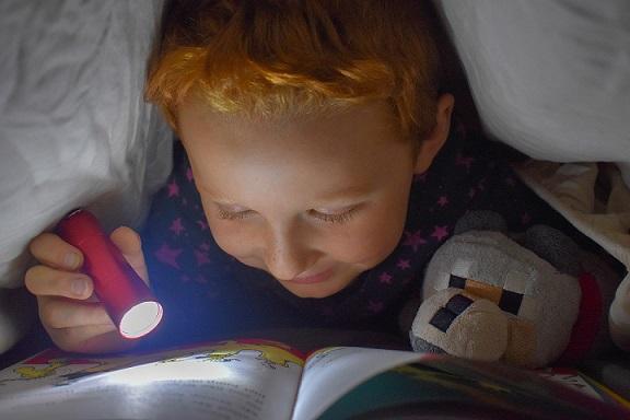 Große Abenteuer für kleine Leseratten